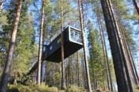 Cabin-refugio-TreeHotel-Cyren_Cyren