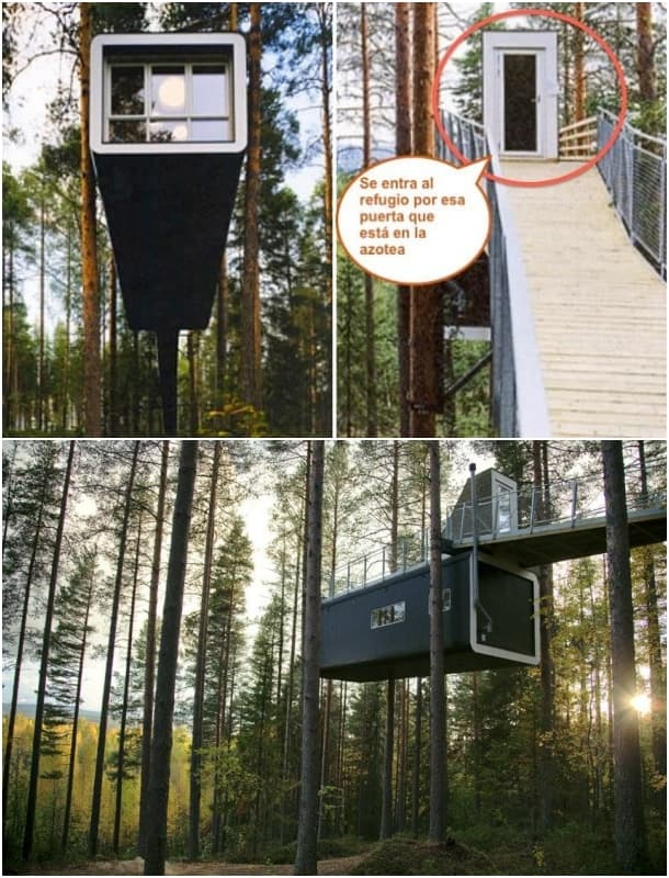 acceso al refugio prefabricado de madera The Cabin