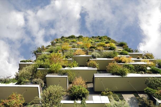 Bloques de apartamentos con árboles